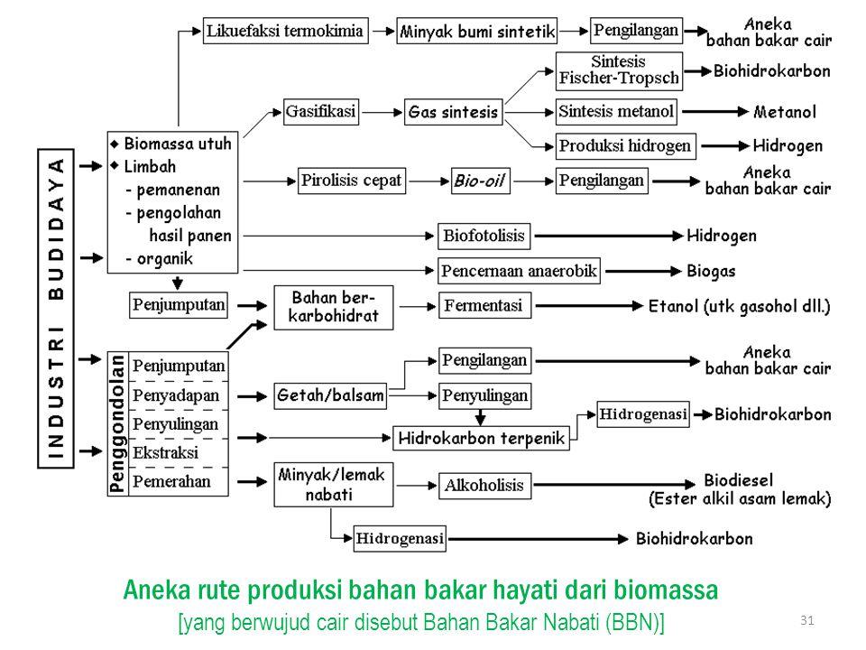 Aneka rute produksi bahan bakar hayati dari biomassa [yang berwujud cair disebut Bahan Bakar Nabati (BBN)]